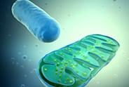 assay-biotech-assay-kits-img