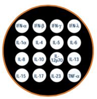 b5a456ba-9e62-46a5-98ec-041c3a256d79