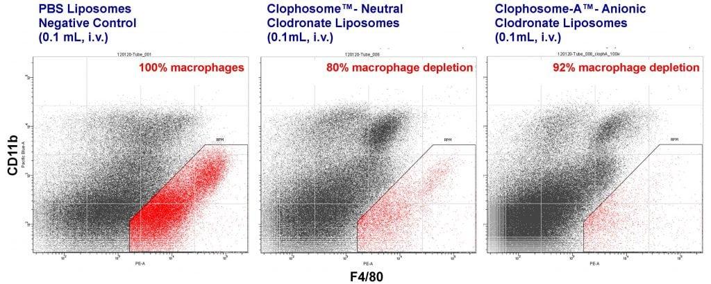 clophosome-flow-cyto-i-v