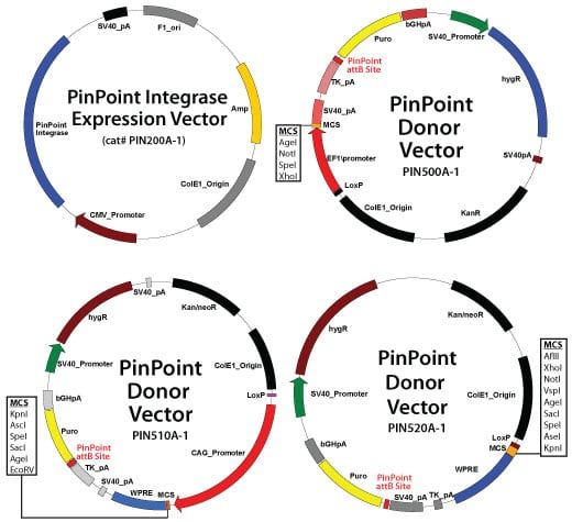 PinPoint Targeted Integration System