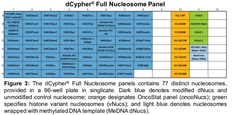 dCypher® Nucleosome Panels: Unparalleled Diversity for Rapid Histone PTM Profiling