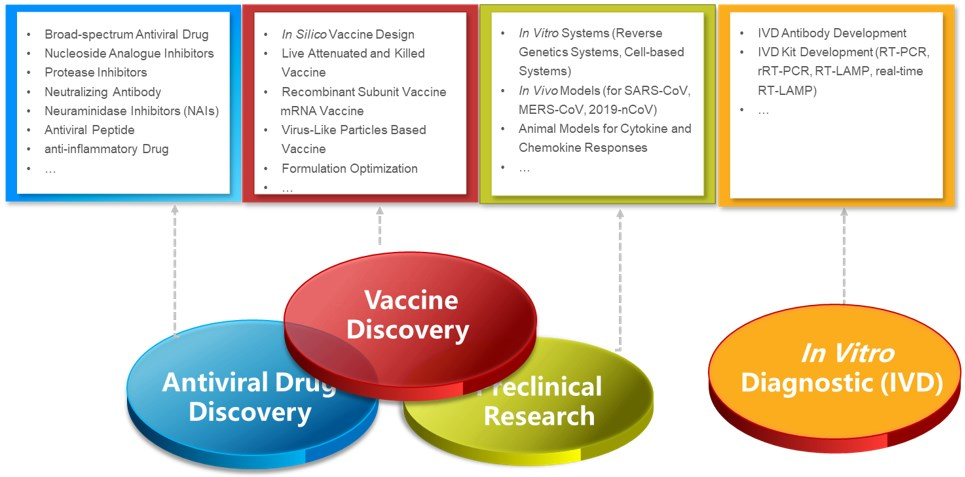 Research Solutions for Coronavirus – Creative Biolabs